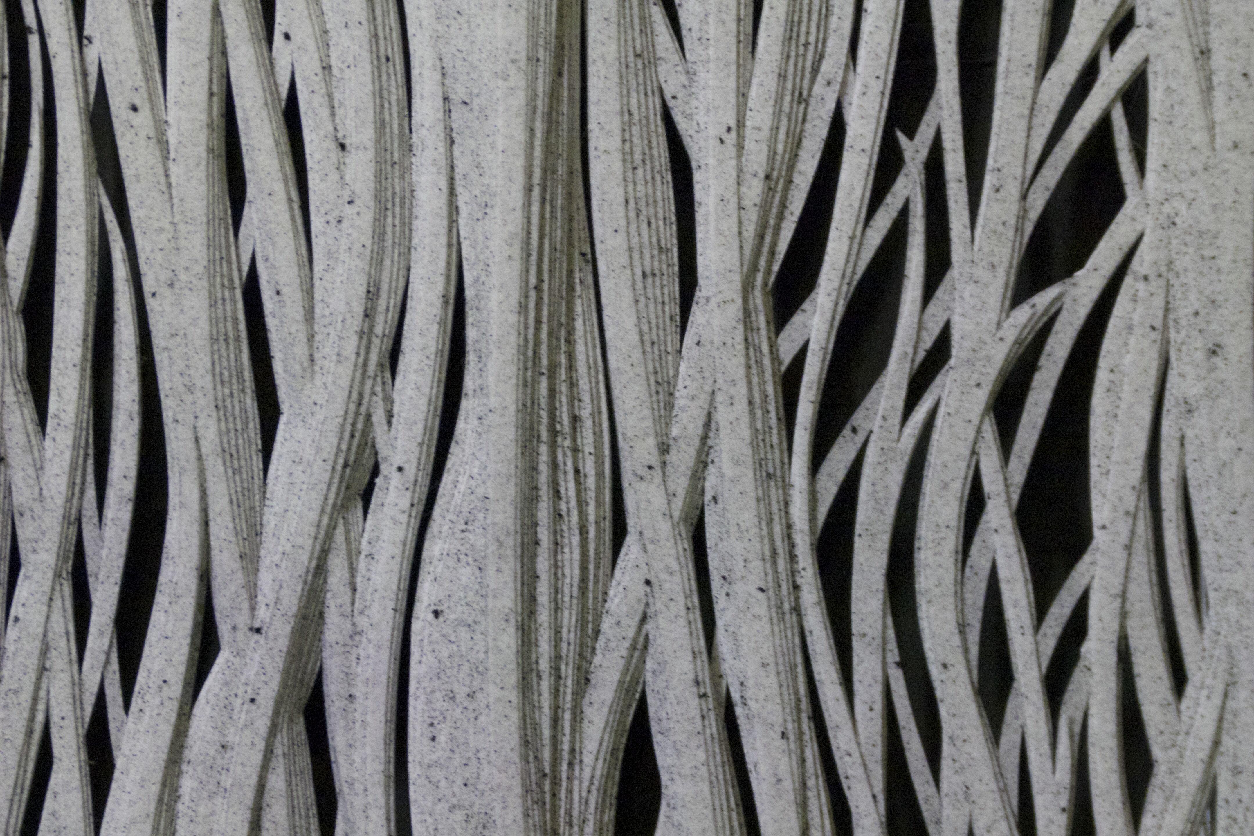Grass Whispering Secrets (detail)